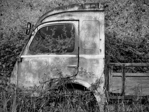 urbex autotuin overwoekerd zwart wit fotografie 2057 525x394